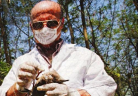 Man in mask and lab coat outdoors, examining captured bird for avian flu.