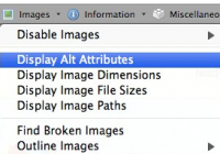 "Screenshot of image info interface with ""Display Alt Attributes"" selected."