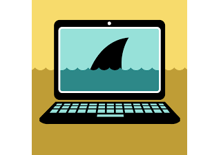 shark fin on computer screen
