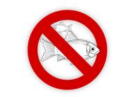 fish with red circle & slash mark icon