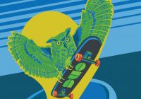 illustration of owl riding a sklateboard with Duo logo