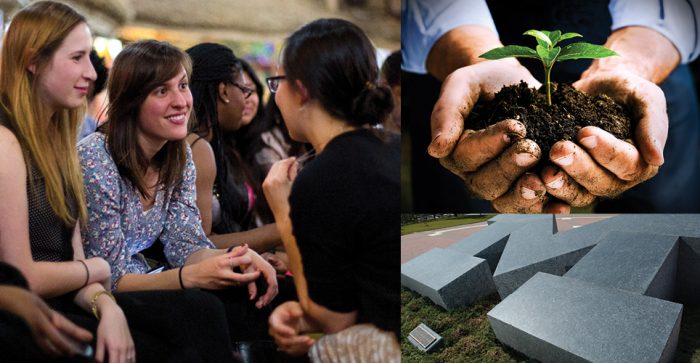 Staff interacting, a seedling image, and stone block M
