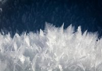 Ice crystals formed in a unique pattern