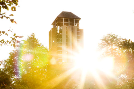 (Photo of the sun shining through trees and a tall building.)